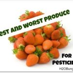 Best and Worst Produce For Pesticides