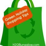 Green Holiday Shopping Tips ~ Bag the Bag