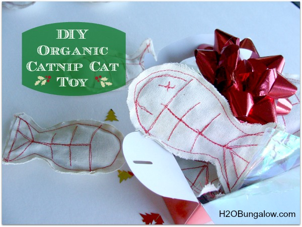 Easy DIY Organic Catnip Cat Toy