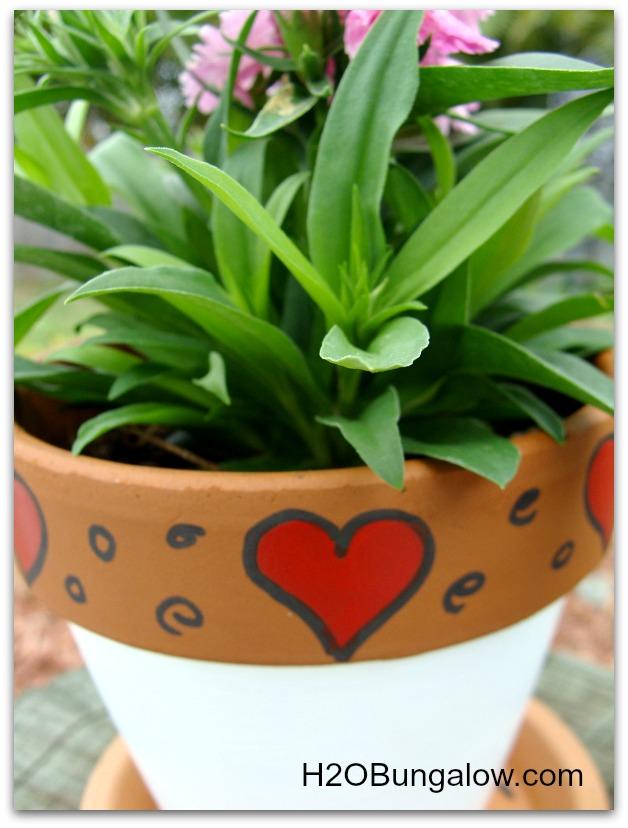 DIy Valentine plant gift