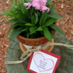 Valentines Plant Gift With Free Printable