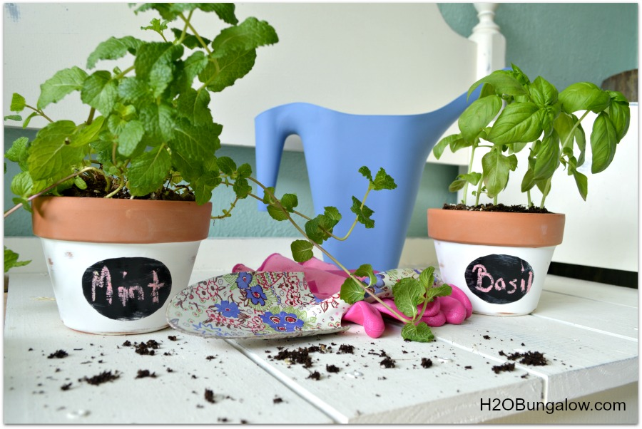 TerraCotta Herb Planters With Labels