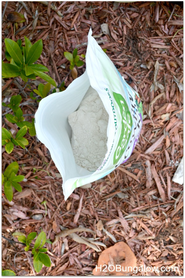 Use diatomaceous earth organic for a non-chemical green pest control solution. It's super inexpensive too! www.H2OBungalow.com #organicpestcontrol #green #greenpestcontrol