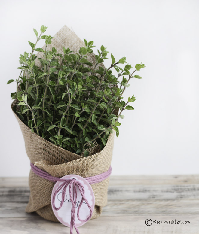 Easter hostess plant gift idea