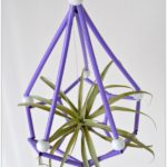 DIY Himmeli Air Plant Holder