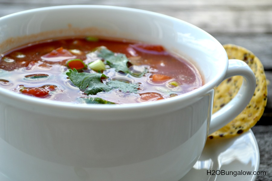 Simple-Freash-Gazpacho-Soup-Recipe-H2OBungalow