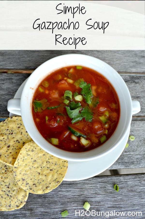Simple-Gazpacho-Soup-Recipe-H2OBungalow