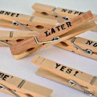 DIY Clothes Pin Word Clips