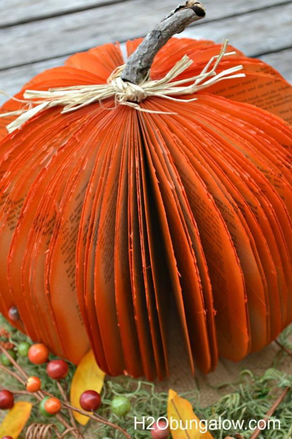 twig stem on book pumpkin