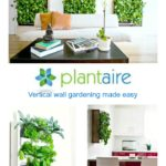 Plantaire Wall Gardens