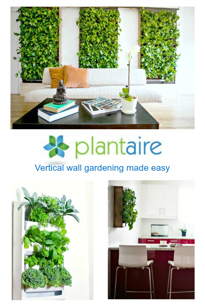 Plantaire-vertical-wall-gardening-made-easy
