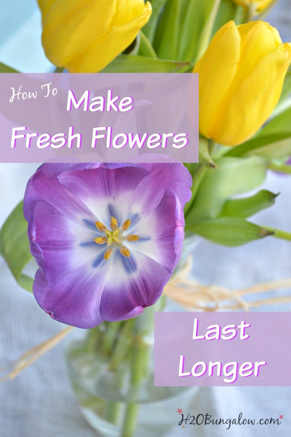 How-to-make-fresh-cut-flowers-last-longer-with-simple-ingredients-you-have-in-the-kitchen-H2OBungalow