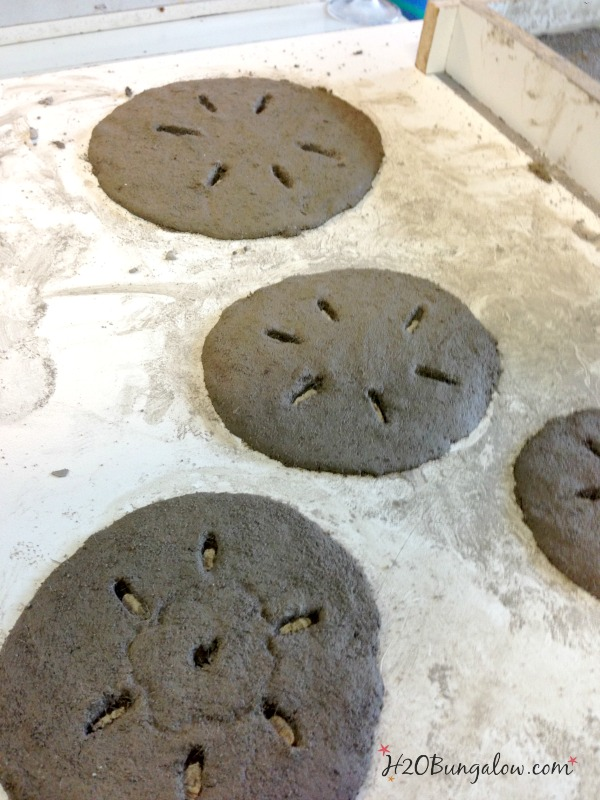 Wet-concrete-sand-dollars-with-Buddy-Rhodes-Concrete-mix-H2OBungalow