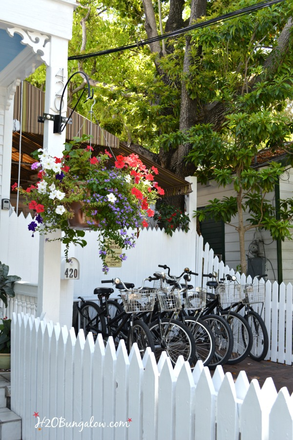 Bicycles are a major mode of transportation in the Key West FL H2OBungalow