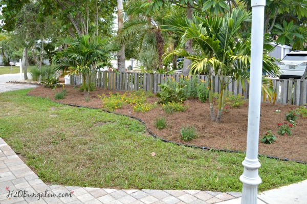 DIY budget landscaping tutorial for butterfly gardening using Florida native plants H2OBungalow