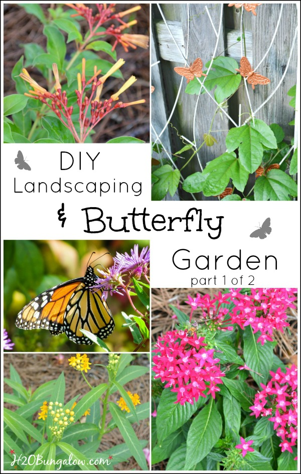 DIY butterfly garden and landscaping part 1 of 2 covers researching, plnt selection, and layout for your new landscaping or butterfly garde. Includes useful links for resources by H2OBungalow.com