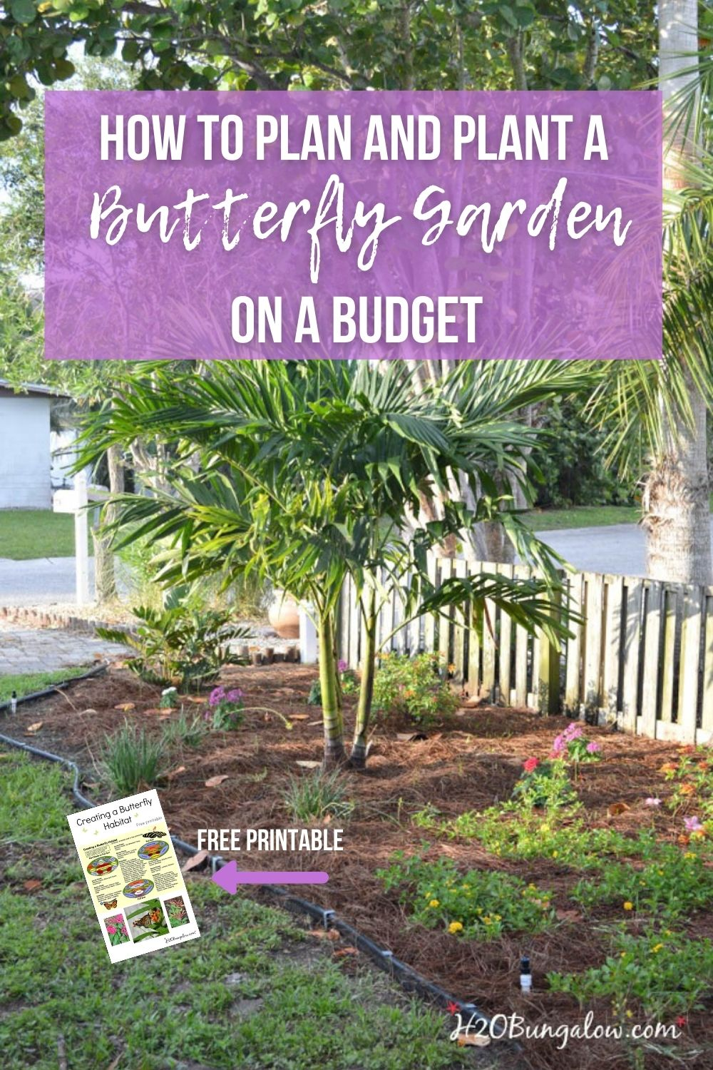Budget DIY landscaping butterfly garden with text overlay
