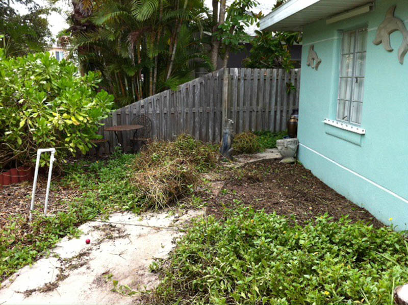 before image of yard