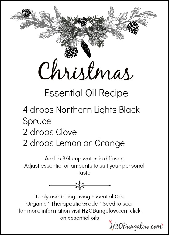 Christmas essential oils Holiday home scent using Young Living organic therapeutic grade essential oils www.H2OBungalow.com