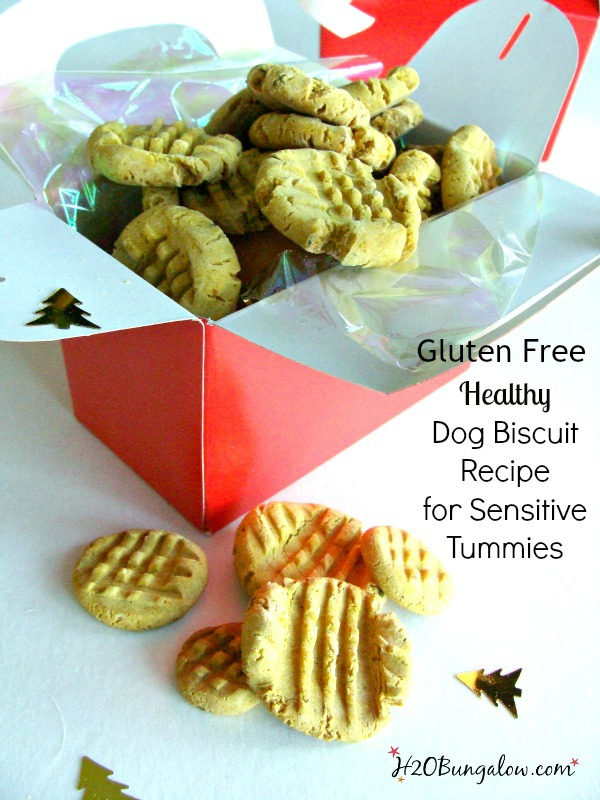 Gluten free dog biscuit recipe that's healthy for your pet, easy to digest and dogs love them! www.H2OBungalow.com