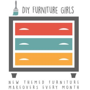 DIY Funiture Girls logo