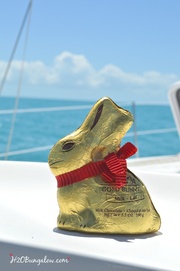 Godiva-bunny-in-Key-West-H2OBungalow