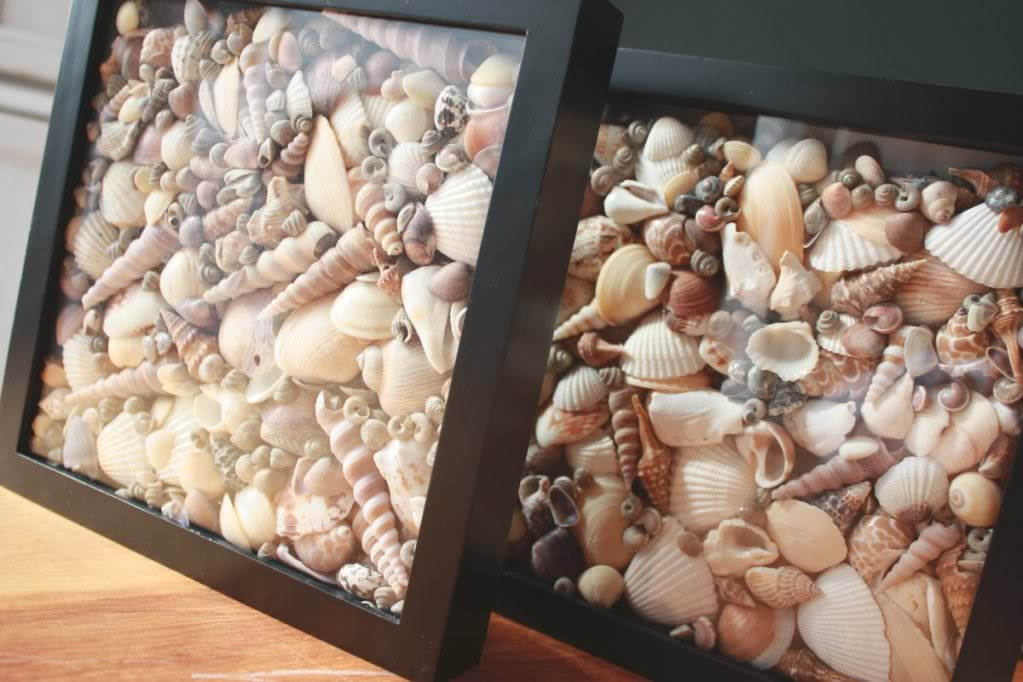 22 Super Creative DIY Seashell Projects You Can Make Will Inspire You To  Pull Out Your
