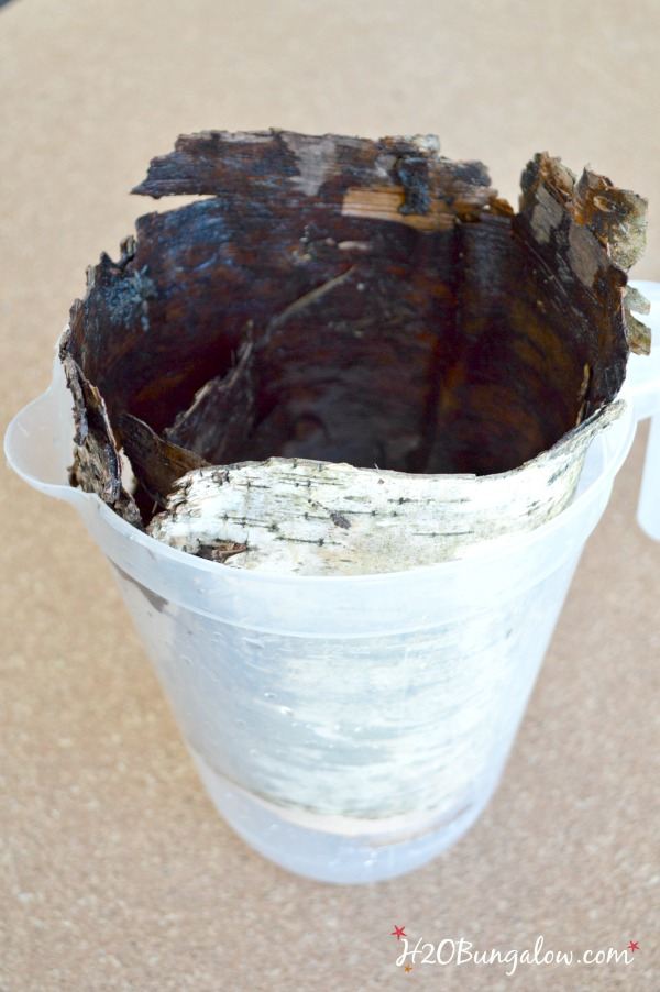 birch-bark-candle-H2OBungalow
