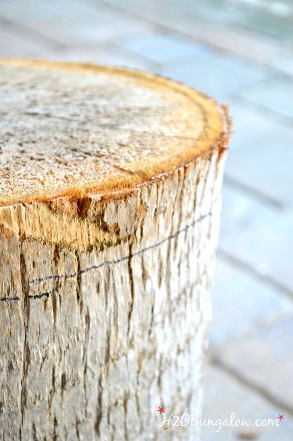 tree-stump-table-H2OBunglow