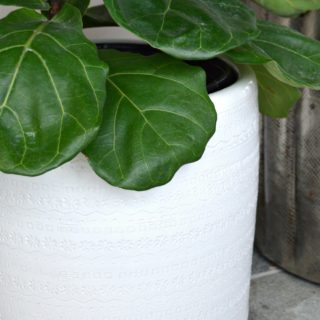 Simple DIY tutorial on how to drill drain holes in ceramic planters. Turn almost any ceramic container into a planter with drain holes with just a drill. H2OBungalow