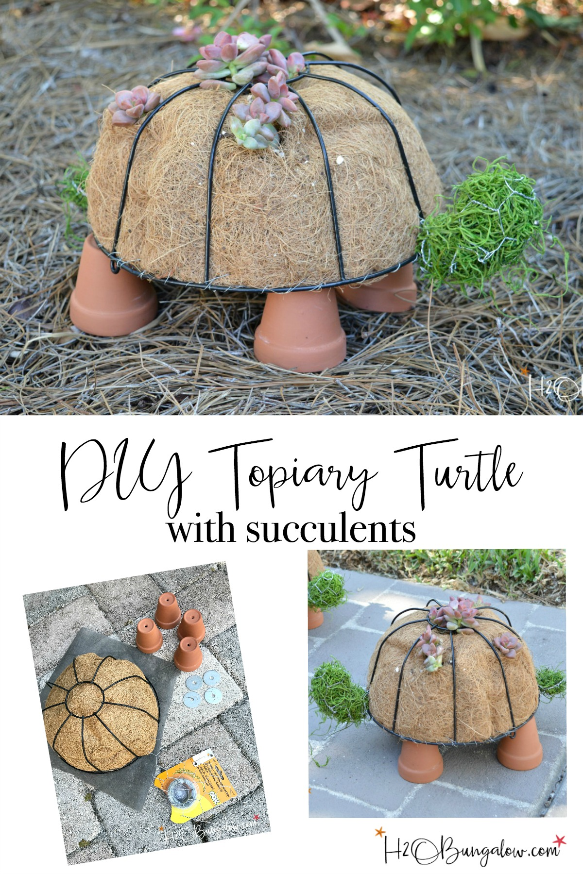 How to Make a DIY Turtle Topiary - H20Bungalow