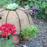 How to make a DIY turtle topiary tutorial from simple dollar store and hardware items. Fill with cactus and place in your garden for sweet DIY garden decor. Find over 450 creative DIY home decor and home improvement tutorials on H2OBungalow.com
