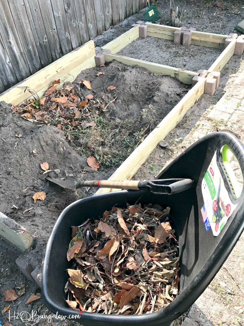 weeds and dried leaves in a wheelbarrow next to raised garden bed