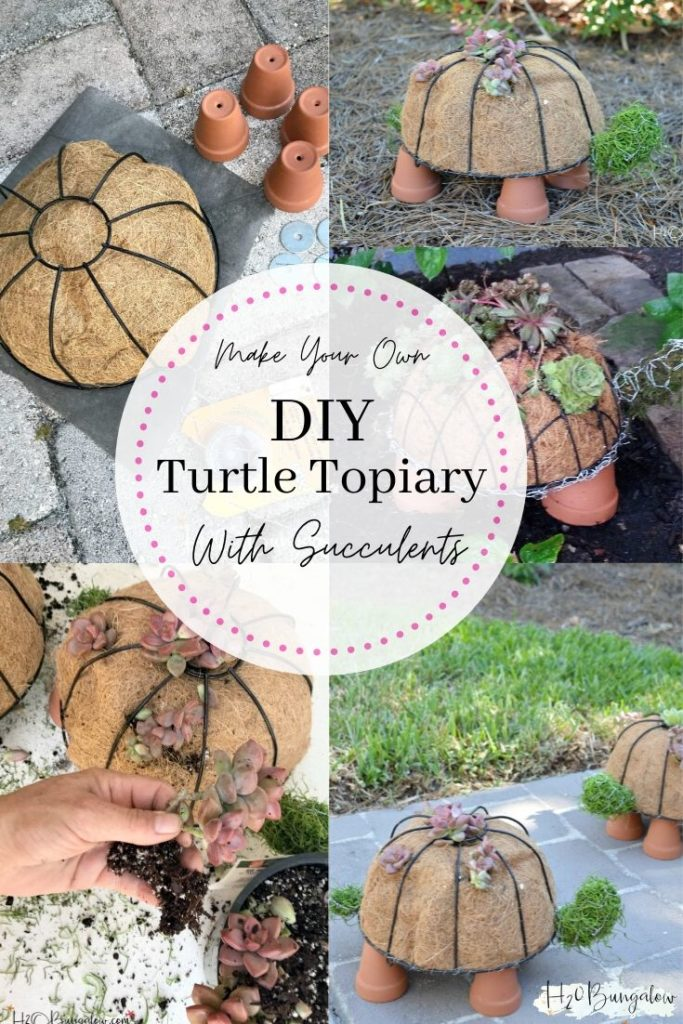 How To Make A Diy Turtle Topiary H2obungalow