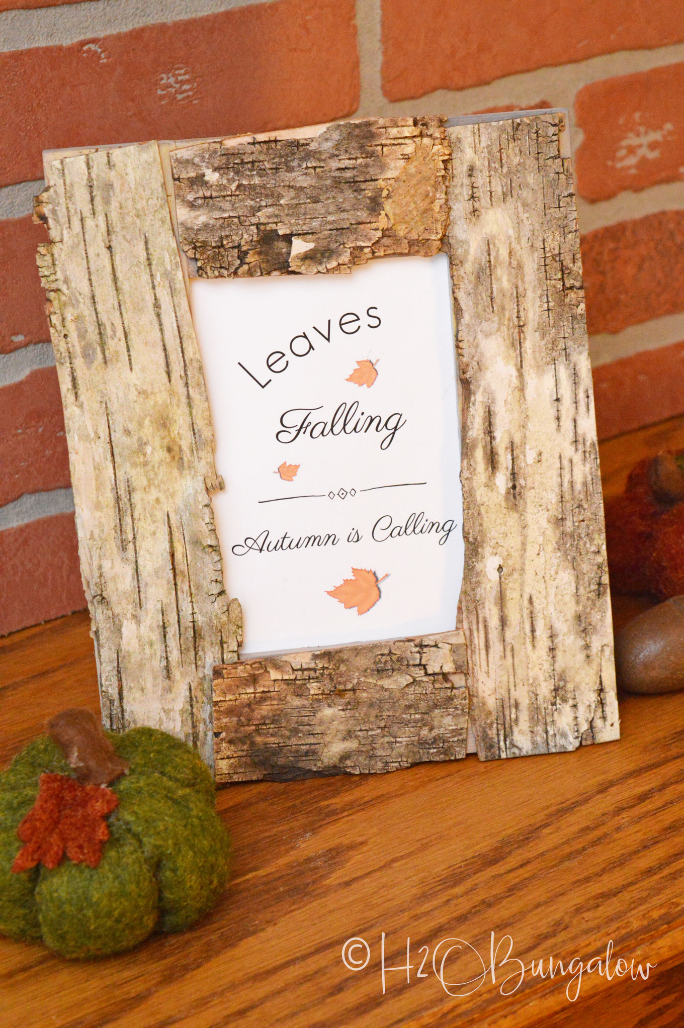 Easy diy birch bark picture frame h bungalow