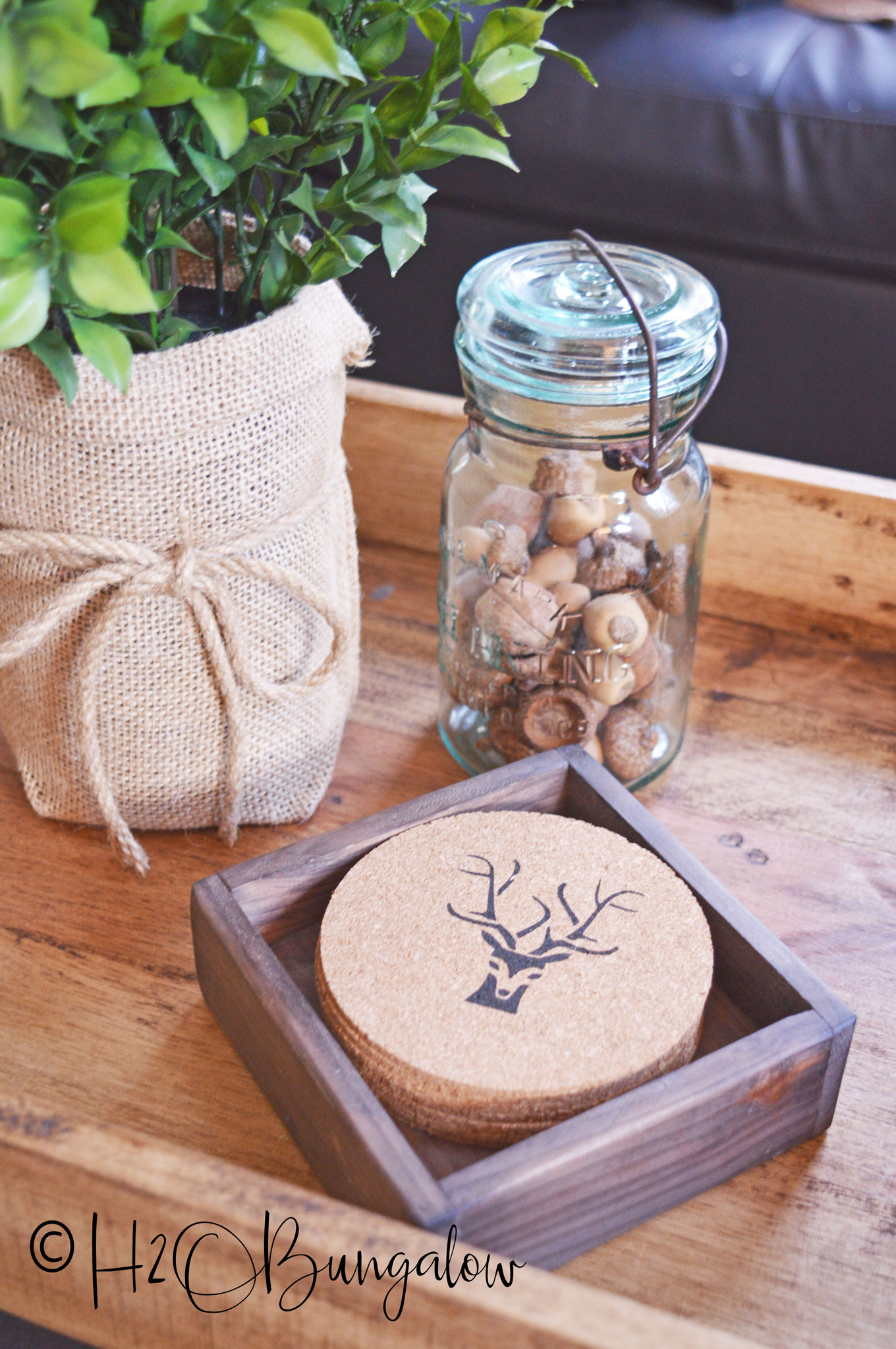 Deer antler DIY drink coasters in wood box with plant and mason jar on coffee table