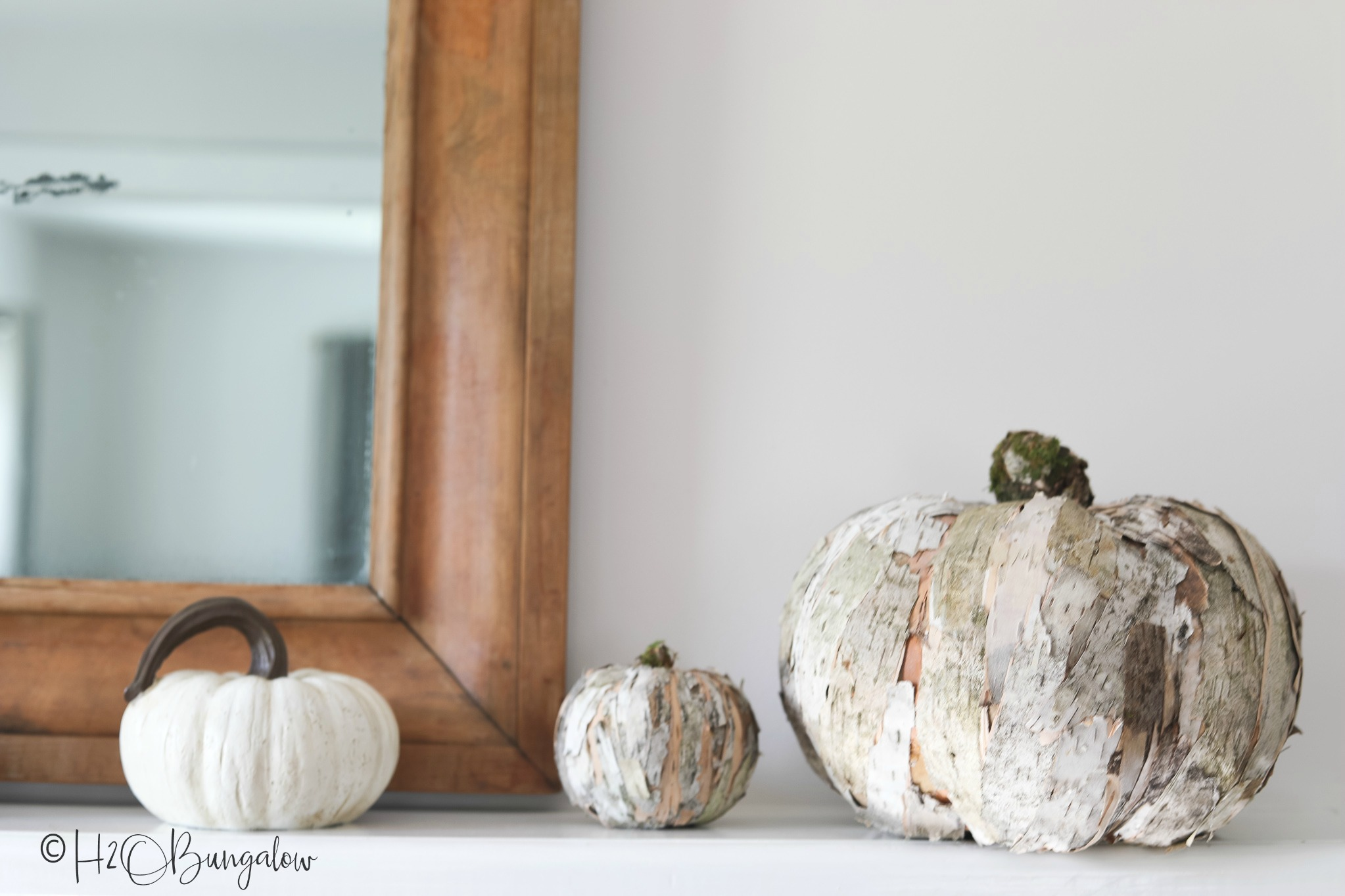 One large birch bark pumpkin and one small birch bark pumpkin sitting on console table with plain white pumpkin