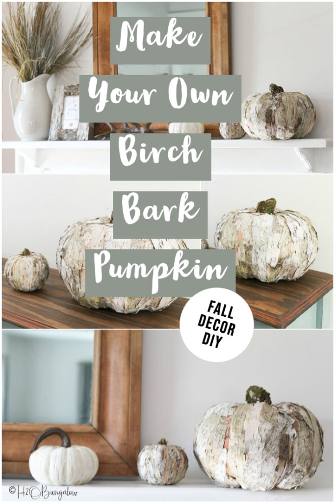 Make your own birch bark pumpkin image to pin to PIneterest