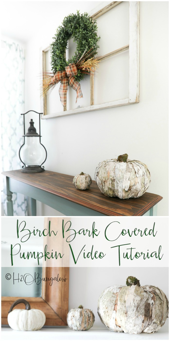 DIY birch bark pumpkin video and tutorial to make this trendy and rustic home decor item out of birch bark. I also share where to get birch bark, how to collect it and alternatives to using real bark too.