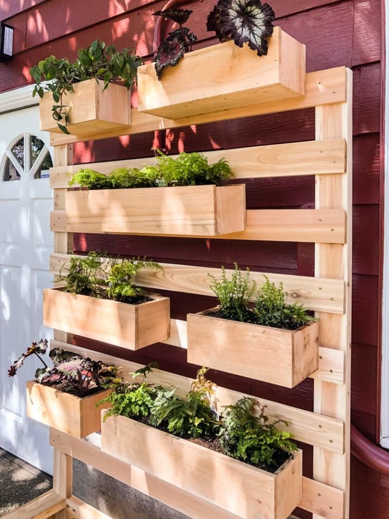 planter on wall hides bad wall