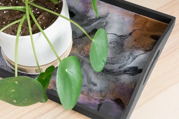 wood and resin serving tray with plant