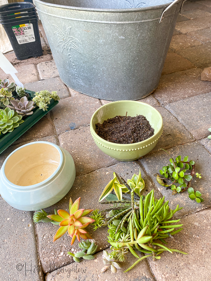 planting drilled ceramic and glazed plant containers with succulents